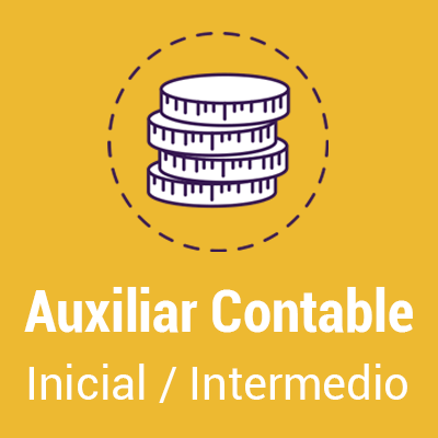 Boton-Auxiliar-Contable