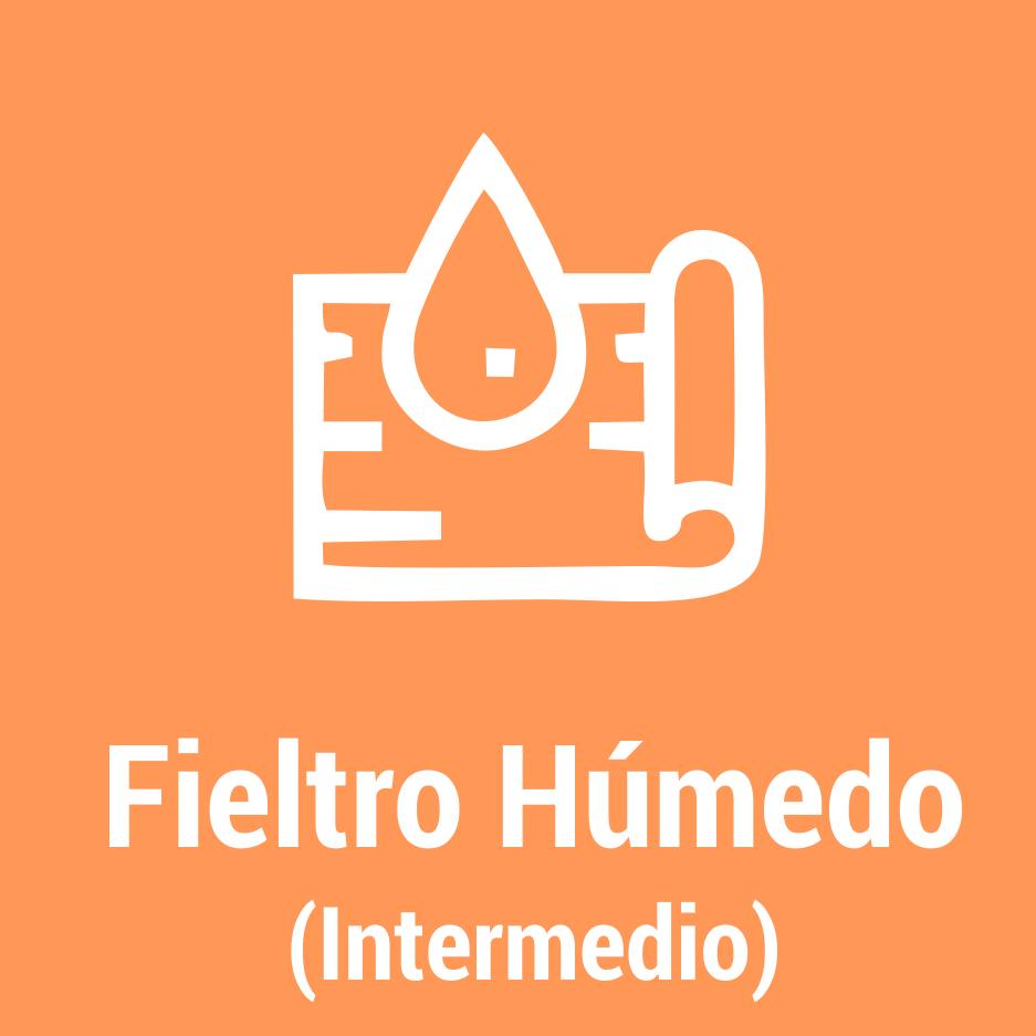 Talleres-Virtuales-Cultura_Boton-FIELTRO-HÚMEDO-INTERMEDIO